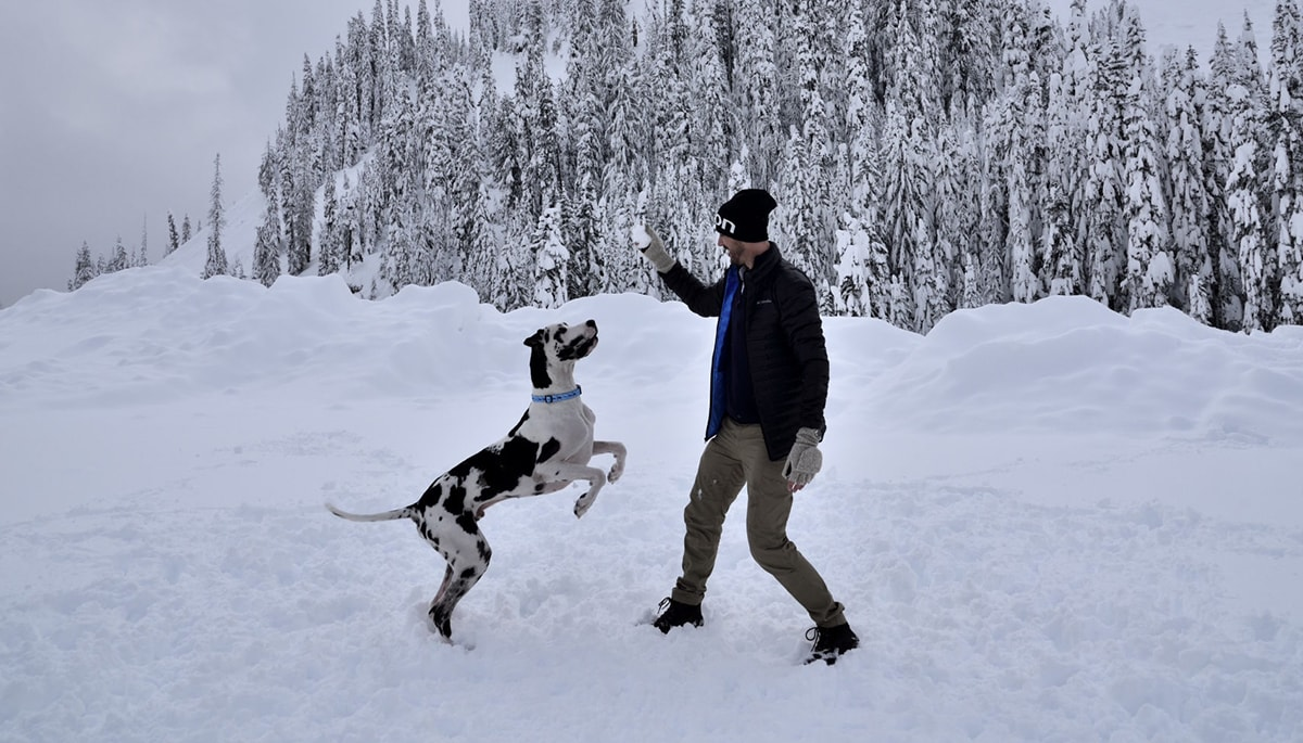 Man playing in the snow with his dog who he used as a tax deduction for his business.